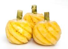 查出的菠萝果子 图库摄影