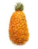 查出的菠萝 免版税图库摄影