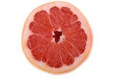 查出的葡萄柚 图库摄影