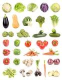 查出的蔬菜 库存图片