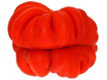 查出的蕃茄 免版税图库摄影