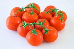查出的蕃茄 图库摄影