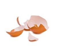 查出的蛋壳 免版税库存图片