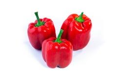 查出的辣椒粉红色 免版税库存图片
