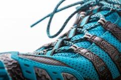 查出的鞋子体育运动 免版税库存照片
