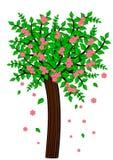 查出的结构树 图库摄影