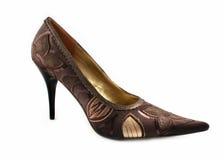 查出的ladys鞋子 库存图片