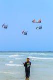 查家上午海滩- 3月9日:第15个泰国国际风筝节日 图库摄影
