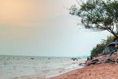 查家上午, Phetchaburi,泰国,海滩增殖比的19/11/2017人 图库摄影