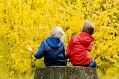查寻两个的男孩坐一个树桩在秋天森林里和 回到视图 免版税图库摄影