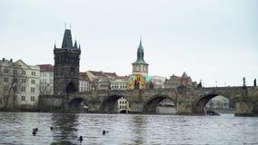 查尔斯桥梁在布拉格市 股票视频