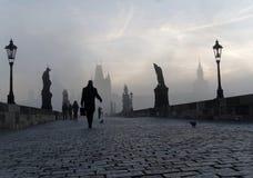 查尔斯桥梁在布拉格每有雾的早晨和一个人 免版税库存图片