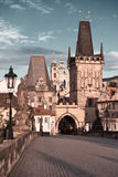 查尔斯桥梁在布拉格,被定调子的imate 免版税库存图片