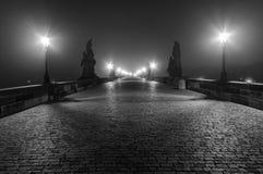 查尔斯桥梁 免版税图库摄影