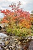 查尔斯河在秋天 免版税库存照片
