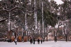 查尔斯顿校园,暴风雪学院2018年 免版税库存照片