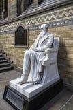 查尔斯・达尔文雕象在伦敦的自然历史博物馆 库存照片