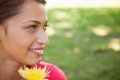 查找往端的妇女,当拿着一朵黄色花时 免版税库存图片