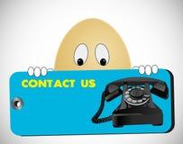 查找我们的联络鸡蛋 免版税图库摄影