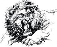 查找牺牲者的动物狮子通配 皇族释放例证