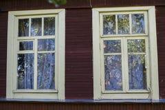 查找视窗的猫 库存照片