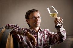 查看白葡萄酒的喜悦的葡萄酒商人在地窖里。 库存照片