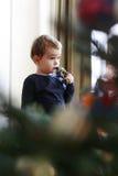 查看的小男孩他圣诞树 库存照片