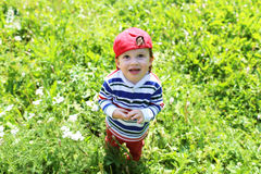 查寻可爱的婴孩站立在草和 免版税图库摄影