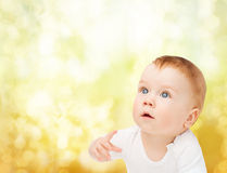 查寻好奇的婴孩 库存图片
