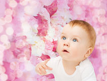 查寻好奇的婴孩 免版税库存照片