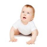 查寻爬行的好奇的婴孩 库存图片