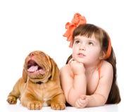 查寻的女孩和的小狗 背景查出的白色 免版税库存图片