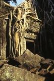 柬埔寨长满的废墟 免版税库存图片