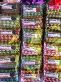 柬埔寨香料和茶看法  免版税库存图片
