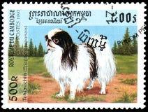柬埔寨-大约1997年:邮票,打印在柬埔寨,显示一个奇恩角下巴日本西班牙猎狗 免版税库存照片