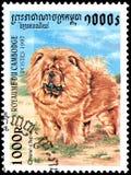 柬埔寨-大约1997年:邮票,打印在柬埔寨,显示一条中国咸菜狗 免版税库存照片