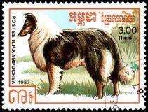 柬埔寨-大约1987年:邮票,打印在柬埔寨,显示一条粗砺的大牧羊犬狗,系列养殖狗 库存照片
