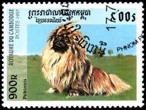 柬埔寨-大约1997年:邮票,打印在柬埔寨,显示一条Pekingese狗 免版税库存图片