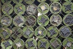 从柬埔寨去除的地雷 库存照片