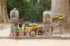 柬埔寨 免版税库存照片