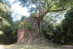 柬埔寨 Sambor Prei Kuk 磅同省 部落Thom市 库存图片