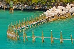 柱子在海 库存图片