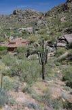柱仙人掌在石峰峰顶公园附近的一个村庄 库存照片