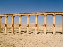 柱廊和城堡,扇叶树头榈,叙利亚 免版税库存照片