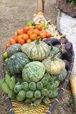 柳条小船运载的水果和蔬菜 库存照片