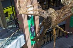 柳条工作飞过的龙在维多利亚购物中心的中央楼梯间暂停了在贝尔法斯特,北爱尔兰 图库摄影