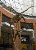 柳条工作飞过的龙在维多利亚购物中心的中央楼梯间暂停了在贝尔法斯特,北爱尔兰 库存图片