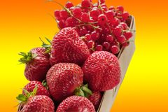 柳条筐用成熟草莓和红浆果在梯度背景 特写镜头 库存照片