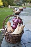 柳条筐用玉米、坚果、南瓜和葱 库存图片