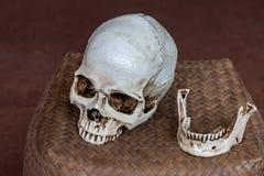 柳条筐的人的头骨地方 免版税库存照片